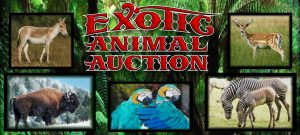 Exotic Animal & Bird Sale - Saturday, September 21st 2019